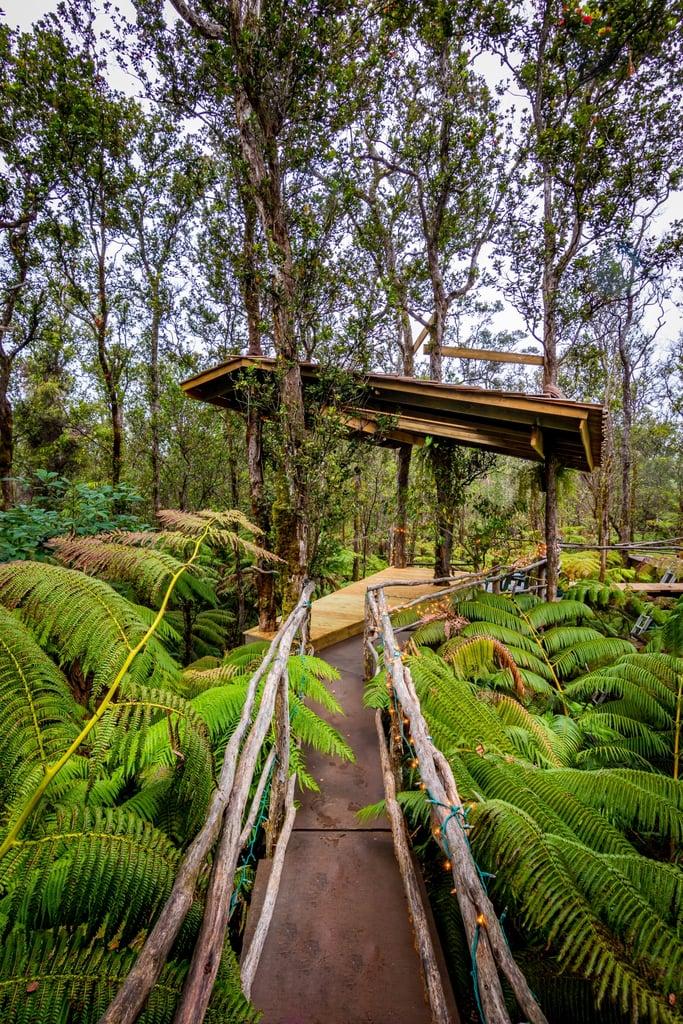Volcano Tree House Rental In Hawaii Popsugar Australia