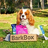 Get a Free Month of BarkBox
