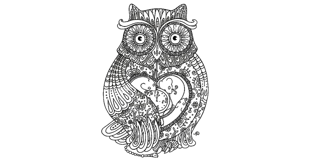 Get the colouring page Owl Free Colouring Pages For