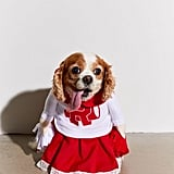 Cheerleader Dog Halloween Costume