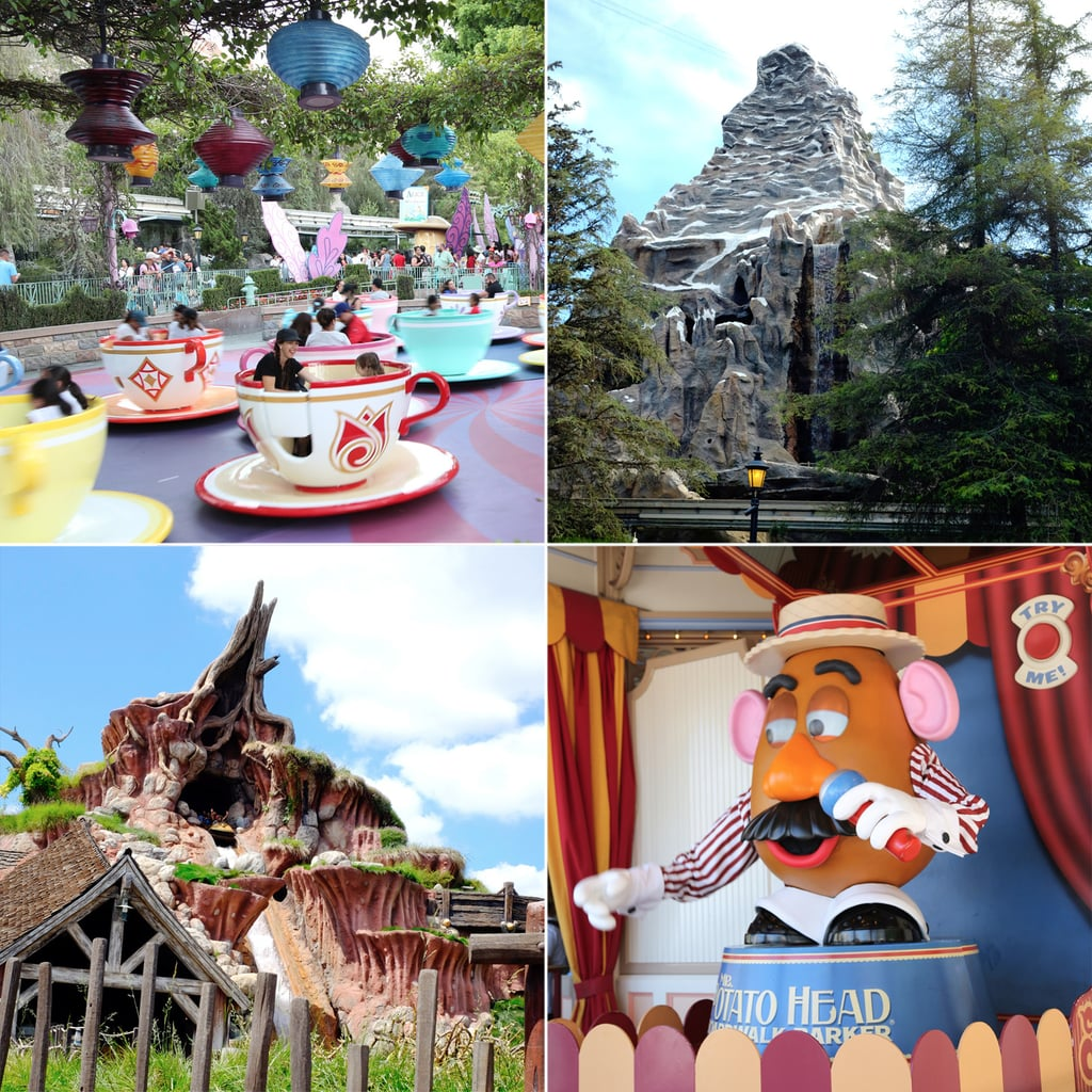 The Votes Are in! See All the Disneyland Rides Ranked