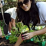 Kim Kardashian planted a garden with her family in LA in August 2009.
