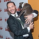 Photos of Tom Hardy Holding Dogs
