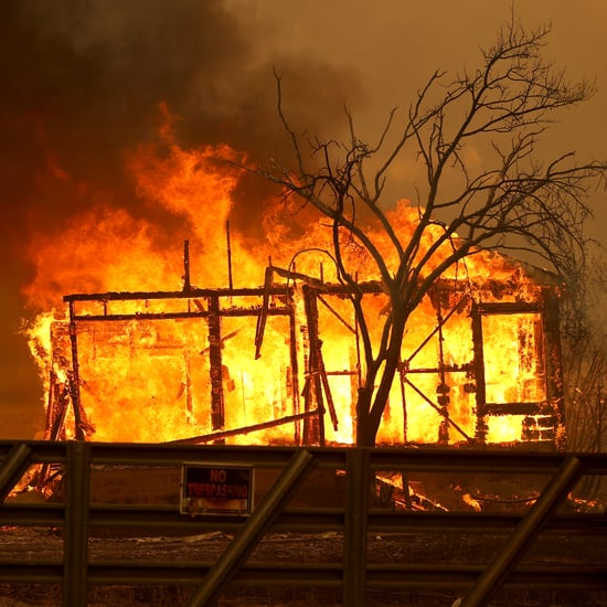 5 Ways to Help California Wildfire Victims in 2020 | Photos