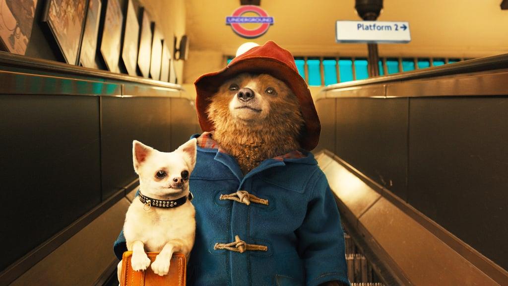 Paddington Bear From Paddington 2