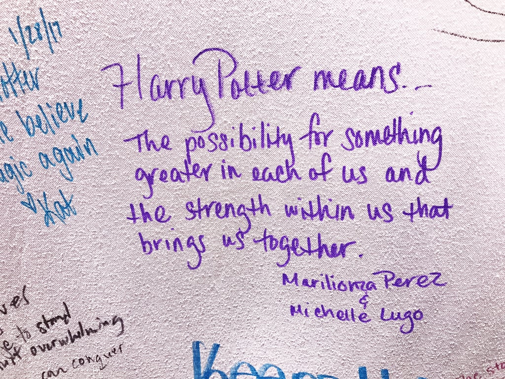 """Harry Potter means the possibility for something greater in each of us and the strength within us that brings us together."""