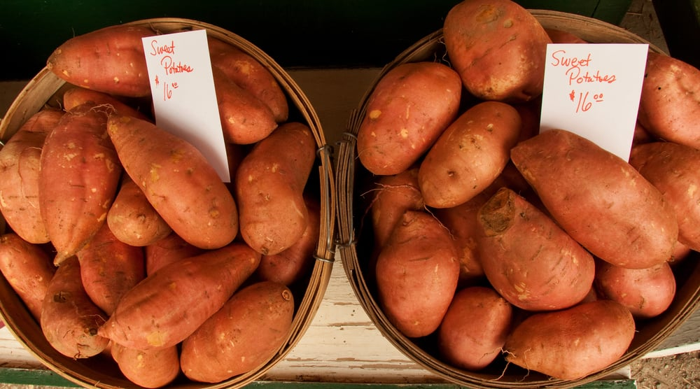 The Winter Food: Sweet Potatoes