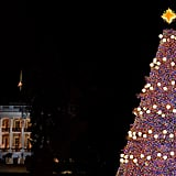 The national Christmas tree was lit outside the White House during the annual lighting ceremony.