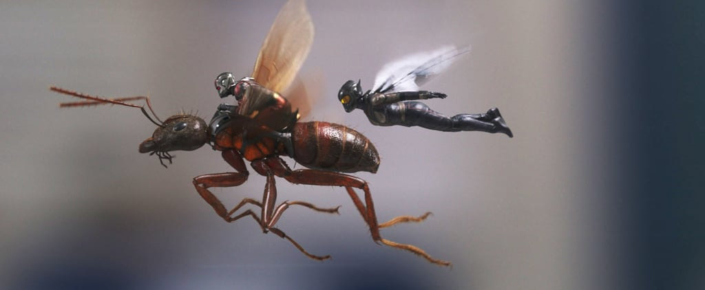 How Many Postcredit Scenes Are in Ant-Man and the Wasp?