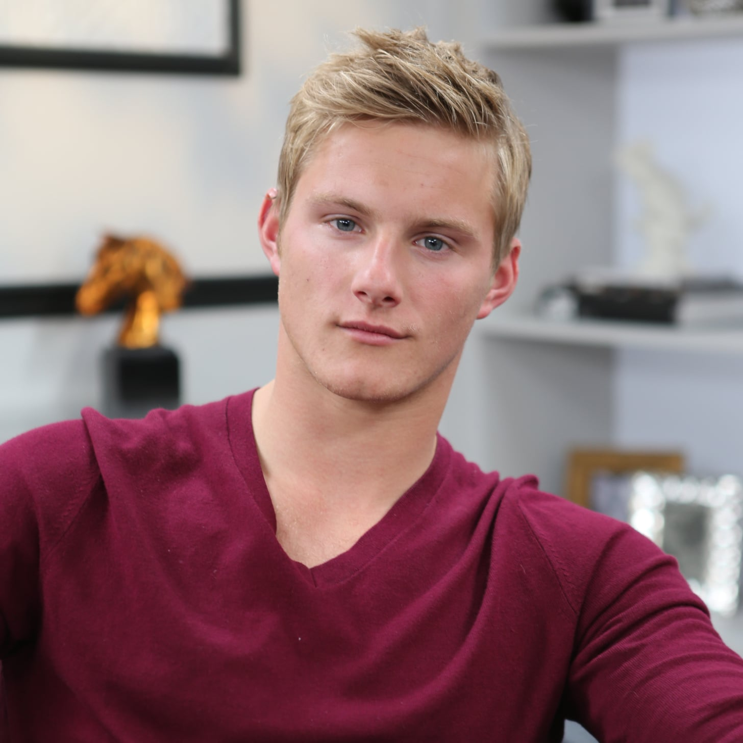 Alexander Ludwig nudes (35 foto and video), Topless, Is a cute, Feet, see through 2015