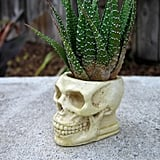 The bone-like color of this planter ($30) makes it look almost a little too realistic.