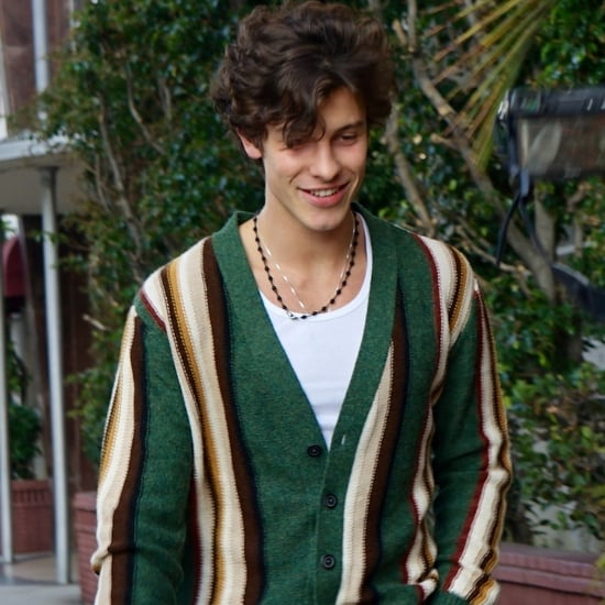 Shawn Mendes With Camila Cabello in a Green Striped Cardigan