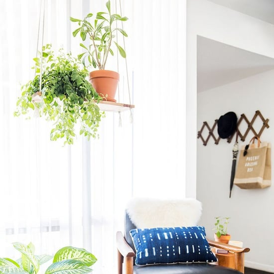 Hanging Plants Ideas From Pinterest