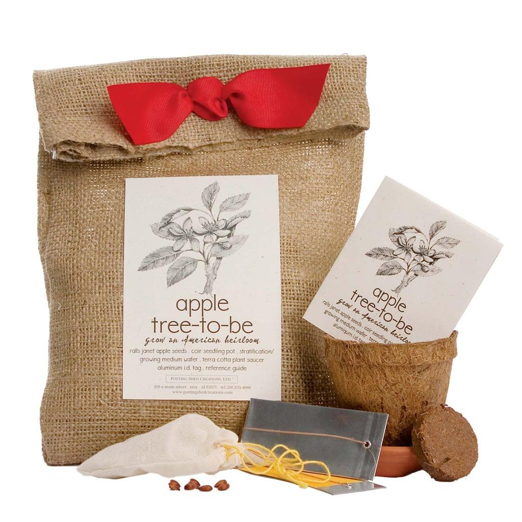 Apple Tree Planting Kit