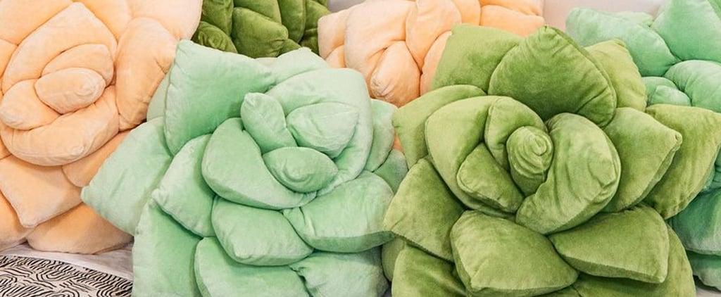 Shop Realistic Succulent Pillows | Green Philosophy Co.