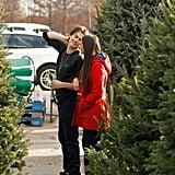 Ian Somerhalder and Nina Dobrev joined up to pick out a Christmas tree together in December 2012.