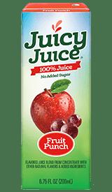 Juicy Juice 100% Juice - Fruit Punch