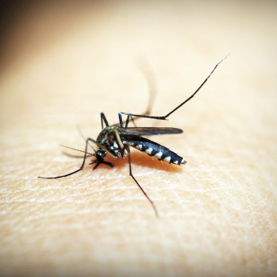 How to Handle Bug Bites on Kids