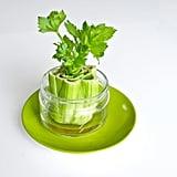 Celery Farm