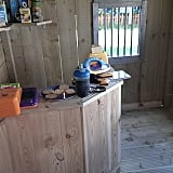 Even the interior of a humble shed can be made into a special area with the addition of the right toys.