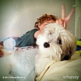 Roman Zelman played around with Debra Messing's dog one morning. Source: Instagram user therealdebramessing