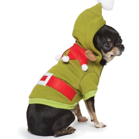 Best Pet Products For December 2012