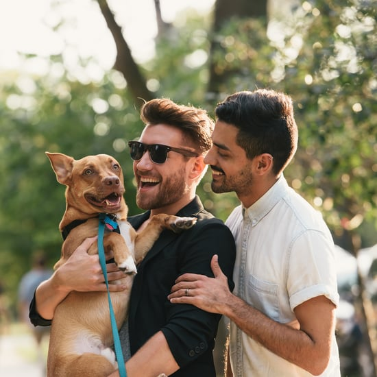 How Getting a Pet Affects Your Relationship