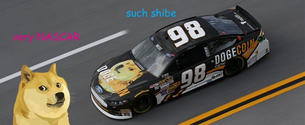 Dogecoin NASCAR Pictures