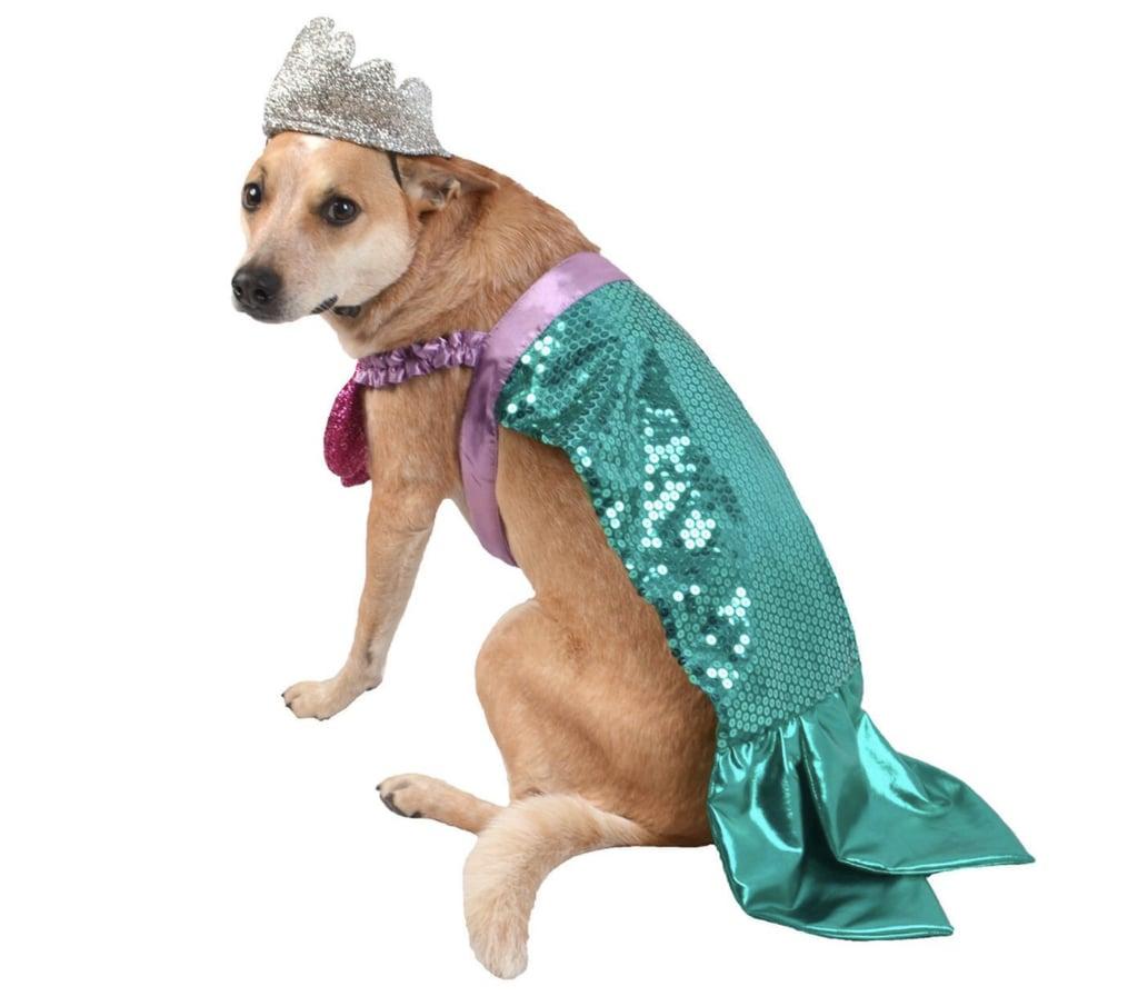 Mermaid Dog Halloween Costume  sc 1 st  Popsugar & Mermaid Dog Halloween Costume | Cheap Pet Costumes | POPSUGAR Smart ...