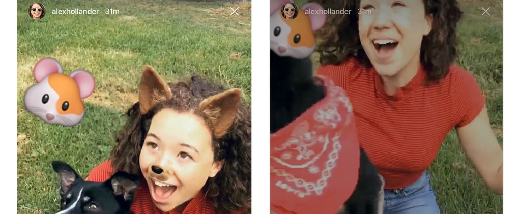 Here's How to DM Other People's Instagram Stories to Your Friends