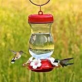 Perky-Pet Top-Fill Glass Hummingbird Feeder