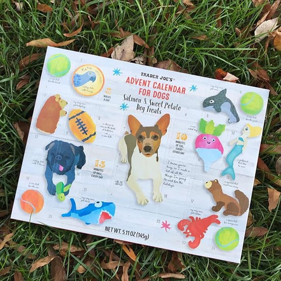 Trader Joe's Advent Calendars For Dogs Are Back on Shelves
