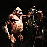 This plastinated gorilla's exposed muscles demonstrate just how strong our cousin is.