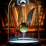 Harry Potter Silence Is Golden Golden Snitch Small Display