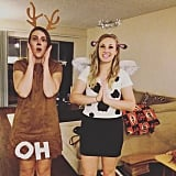 Oh Deer and Holy Cow