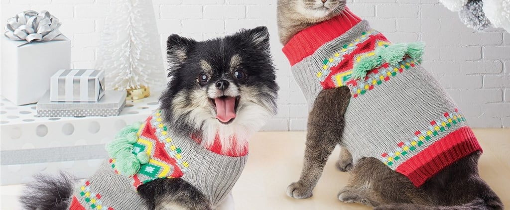 Dog Sweaters at Target