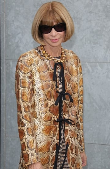 Anna Wintour's Golden Year