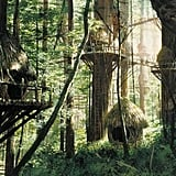 Inspiration: Bright Tree Village (Endor)