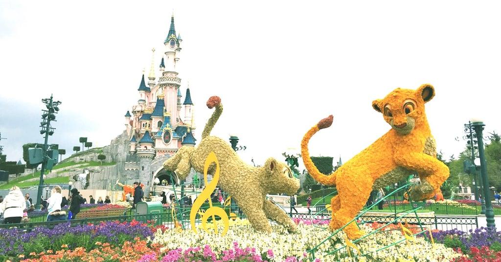 Disney Travel Destinations Around the World