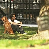 Ryan Reynolds sits with Baxter at a park.