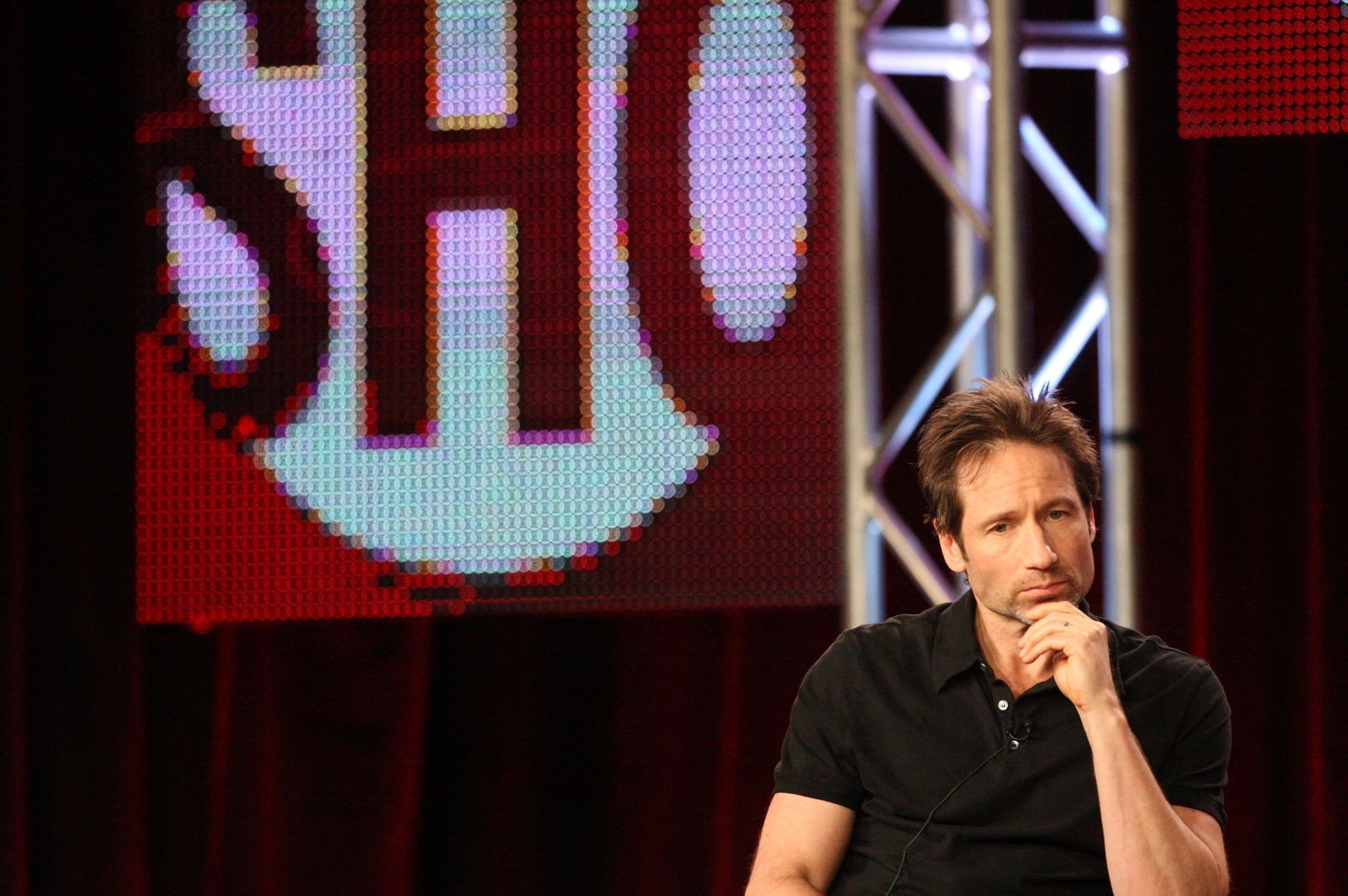 Californication Winter TCA Funny Panel Quotes From David
