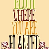 I'm loving the tall letters and cute flowers on this Bloom Where You Are Planted ($21) print.