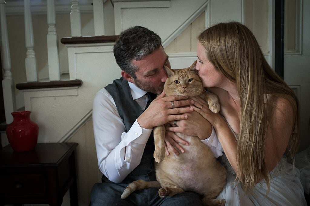 "Despite being the bride and groom, Kiah Berkeley and Peter Sorkin aren't the stars of their own wedding photos. Instead, all eyes are on their 35-pound cat, Vito (formerly known as Symba the Tubby Tabby). The newlyweds recently adopted Vito from the Humane Rescue Alliance in Washington DC, but their new orange tabby couldn't attend their wedding, which was two hours away from home. Instead the wedding photographer, Kristi Odom, suggested that Vito take part in separate wedding photos the week after their nuptials, and it quickly became clear that he was the real star of their photo shoot. ""As a wedding photographer I am constantly photographing love between two people,"" Kristi told POPSUGAR. ""For this shoot, the love wasn't just between Kiah and Peter, but wow, those two really love Vito, and he is definitely a big part of their family and their home.""  Now that Vito has joined his new loving family, Kiah told ABC News that their ""fantastically fat cat"" is focused on healthy living and adapting well to his new lifestyle. ""Vito needs a lot of love and help to get back to being healthy, which is a long journey for any living being,"" Kristi added. ""Him being in a house with so much heart is exactly what he needs. This cat who didn't have a home just a few weeks ago definitely got his happily ever after."""