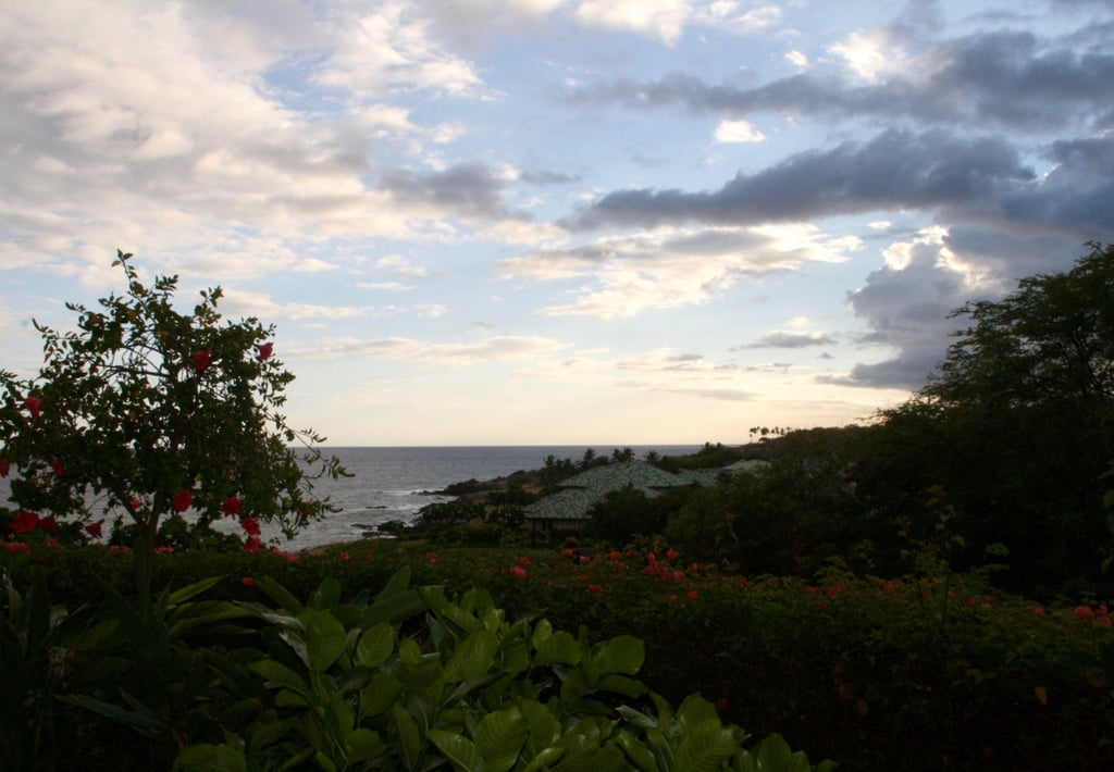 Ocean-view rooms