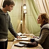 Hermione and Harry were too much like family.