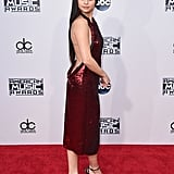 Selena Gomez's 2015 American Music Awards Dress