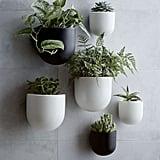 Wallscape Planters