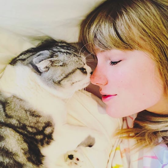 Pictures of Taylor Swift With Her Cats