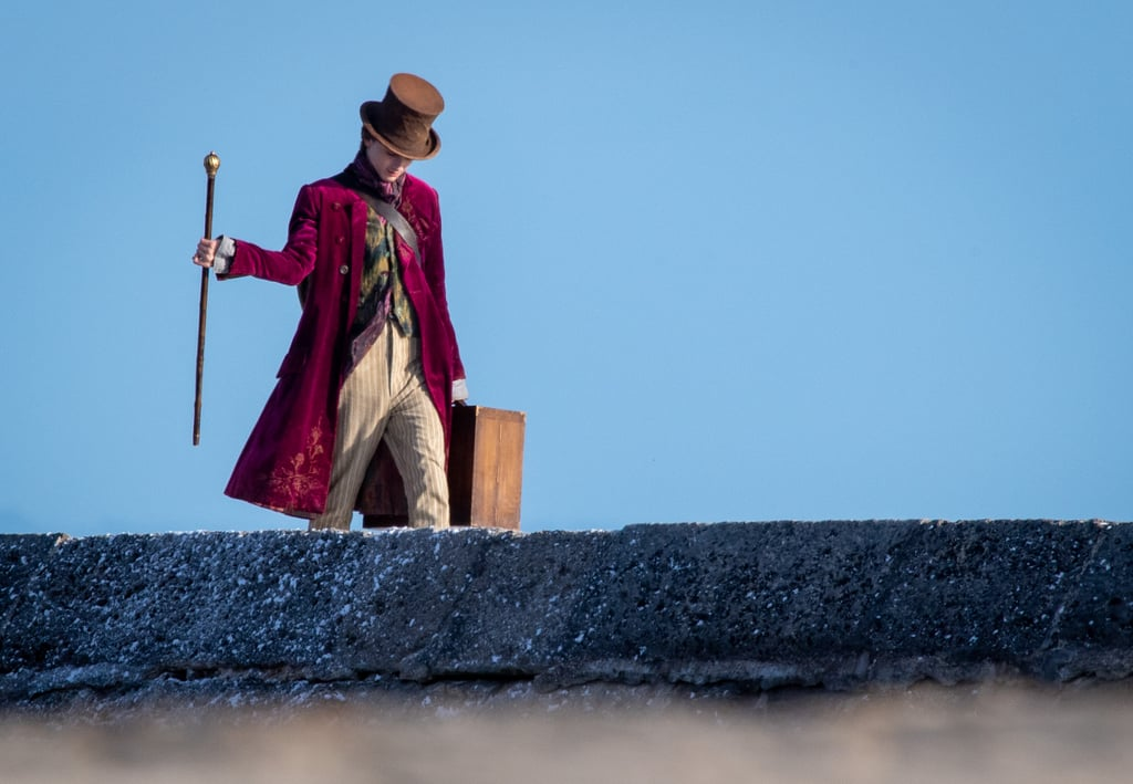 Timothée Chalamet's Willy Wonka Costume