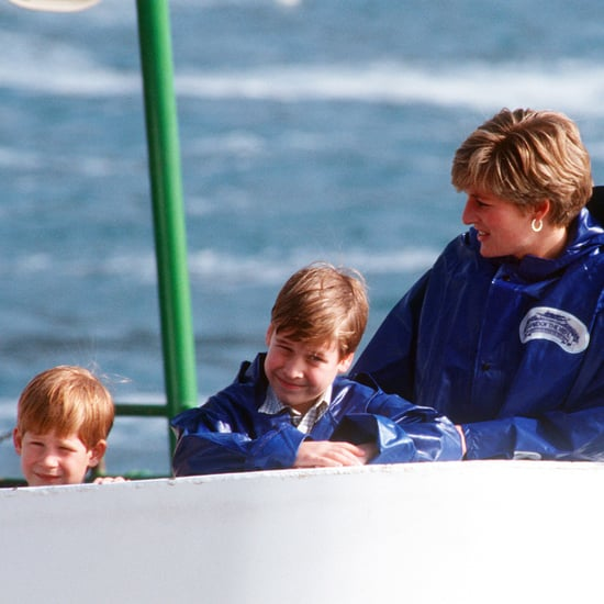 When Was the Last Time Harry and William Saw Diana?
